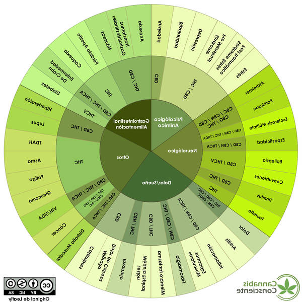 Cbd and cbn benefits for cbn cbd cannabinoids Advice, Review, Test